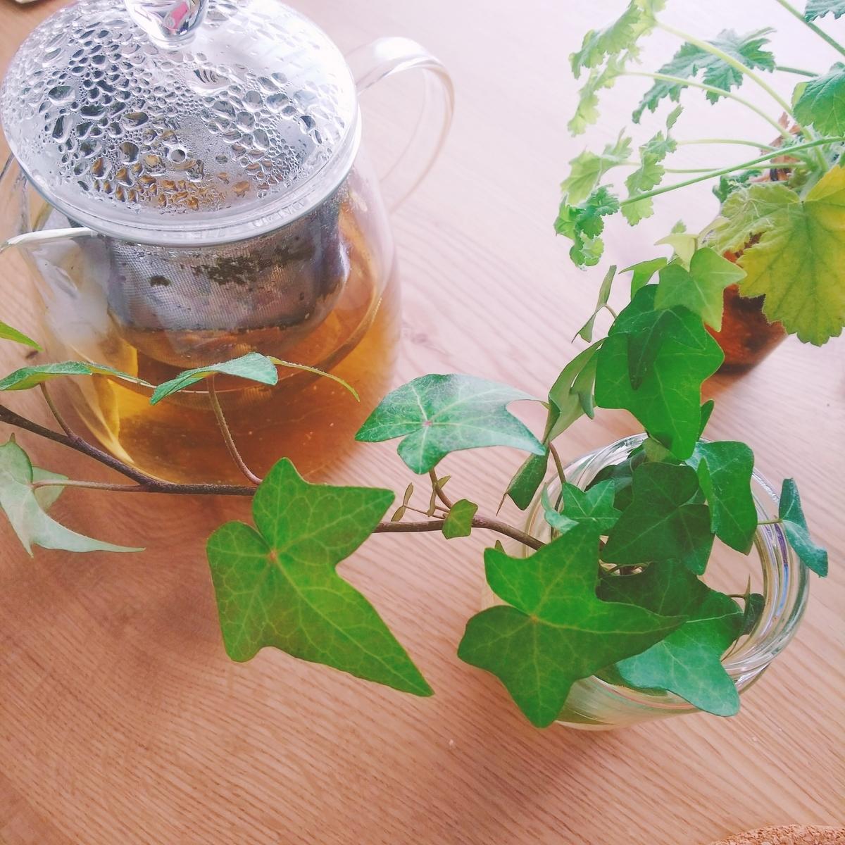 f:id:yukaleaf-aroma:20200218143136j:plain