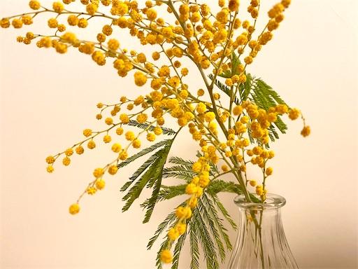 f:id:yukaleaf-aroma:20210307142158j:image