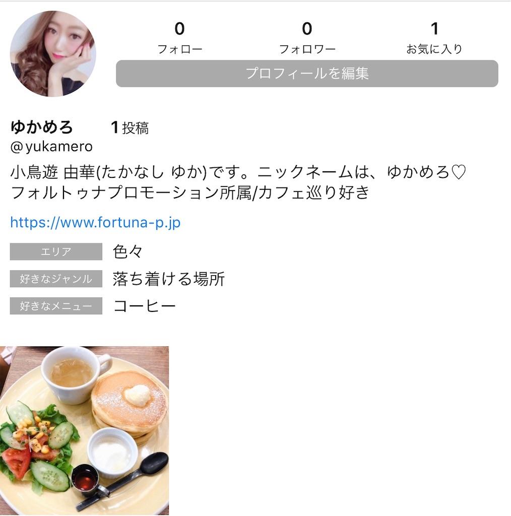 f:id:yukamero:20190405181513j:image