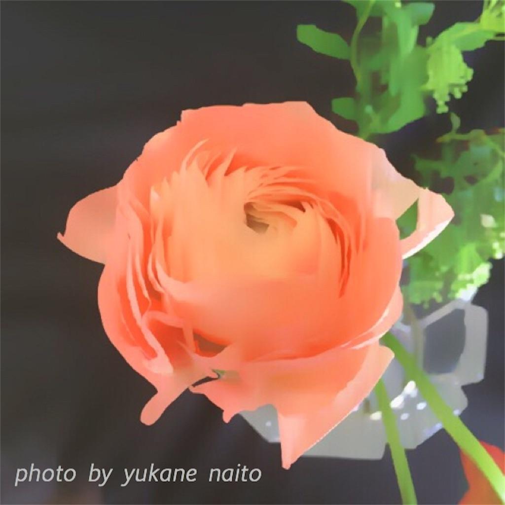f:id:yukane_naito:20170315131905j:image