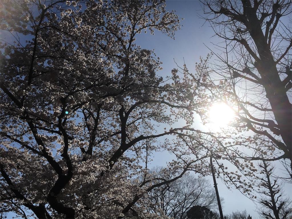 f:id:yukane_naito:20170409001721j:image