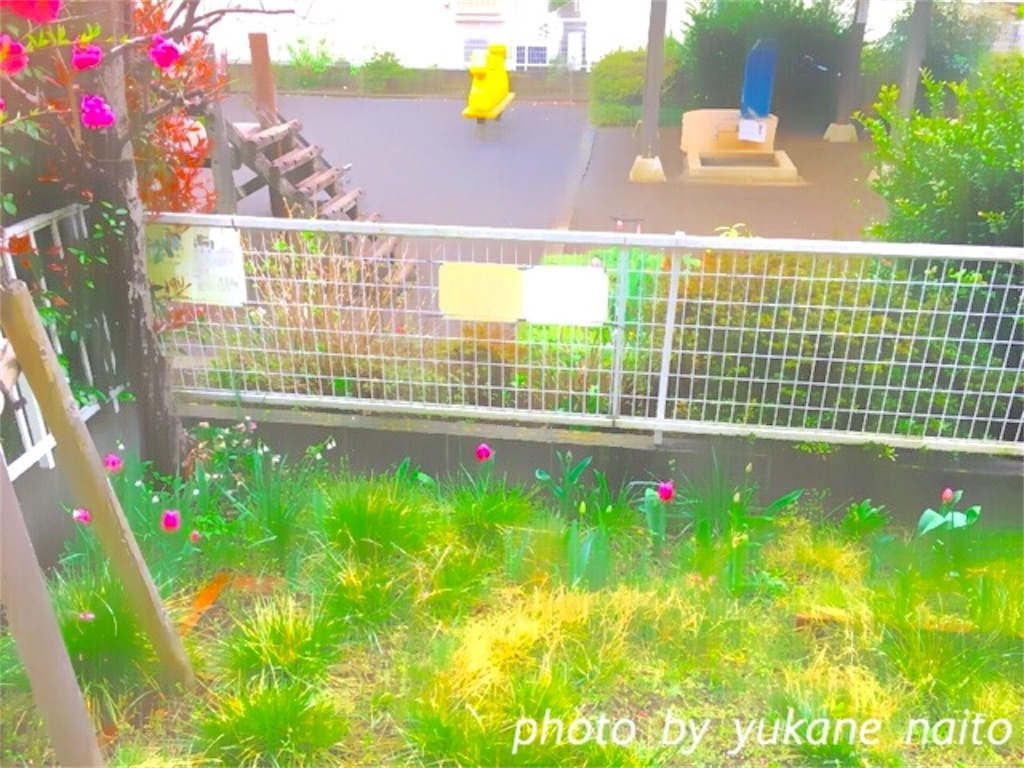 f:id:yukane_naito:20170409110701j:image