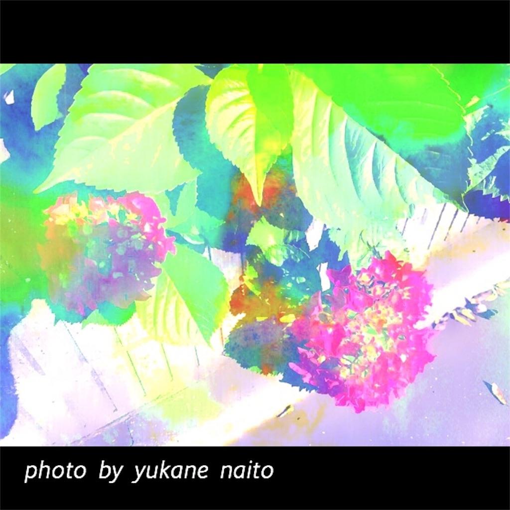 f:id:yukane_naito:20170529083333j:image