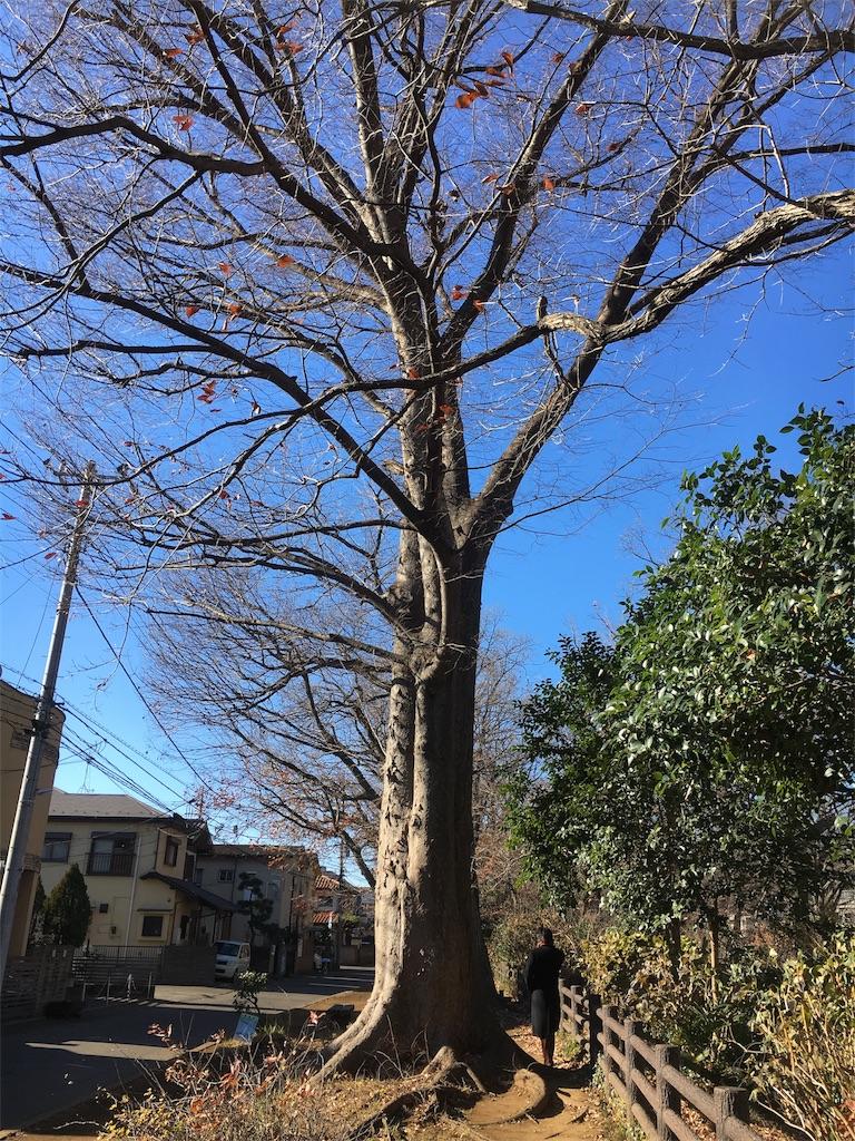 f:id:yukane_naito:20180110133111j:image