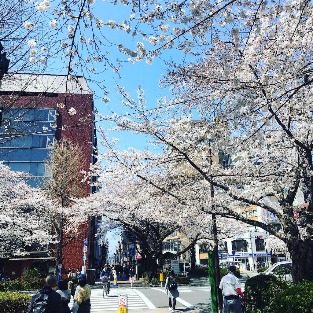 f:id:yukane_naito:20180325163628j:image