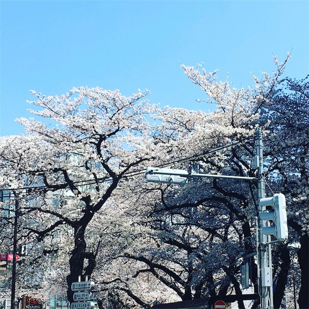 f:id:yukane_naito:20180325163643j:image