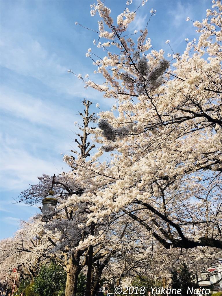 f:id:yukane_naito:20180327095536j:image