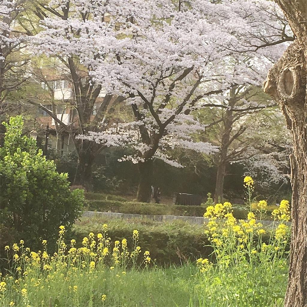 f:id:yukane_naito:20180402130927j:image