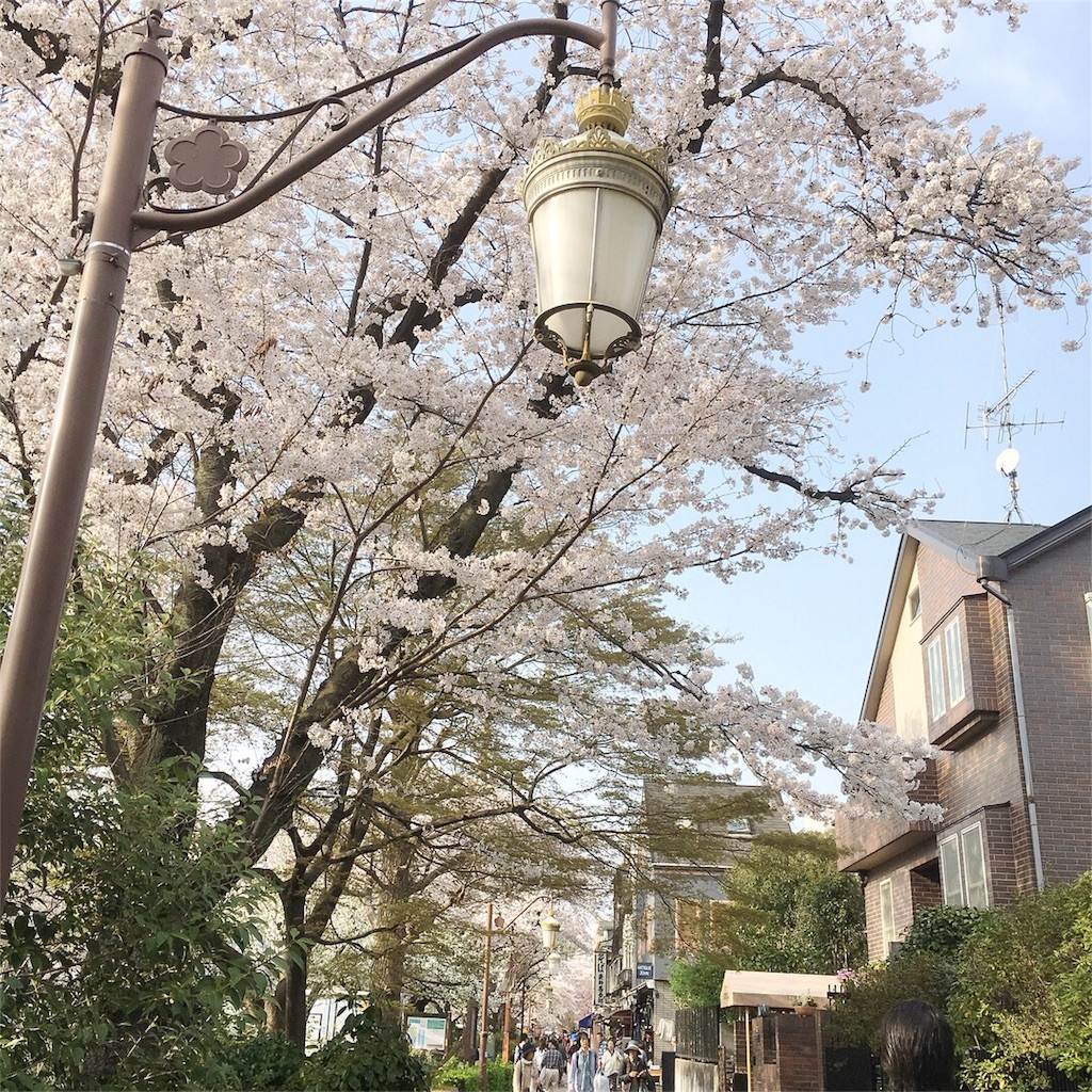 f:id:yukane_naito:20180402131023j:image