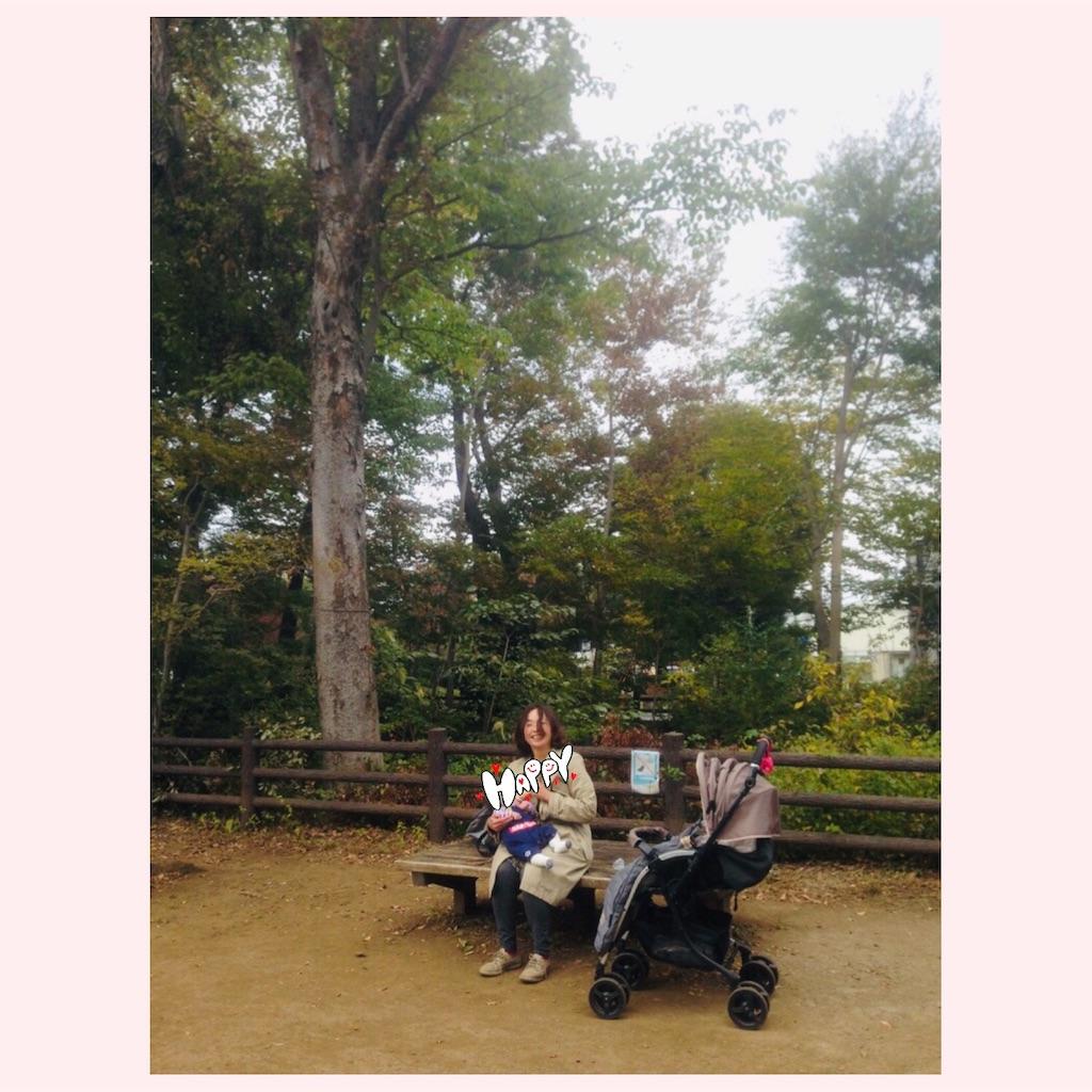 f:id:yukane_naito:20181107144952j:image