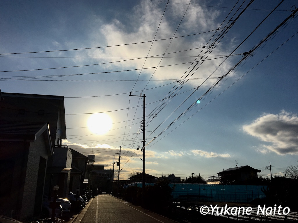 f:id:yukane_naito:20190123112001j:image
