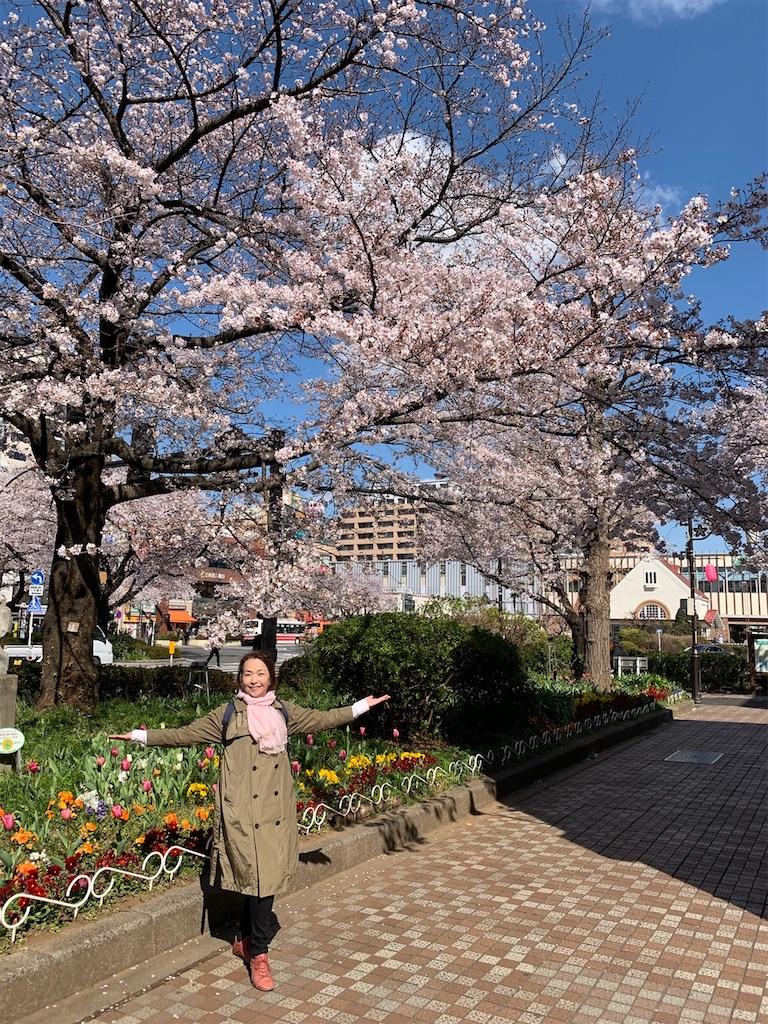 f:id:yukane_naito:20200326165542j:image
