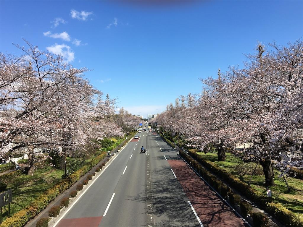 f:id:yukane_naito:20200326165604j:image