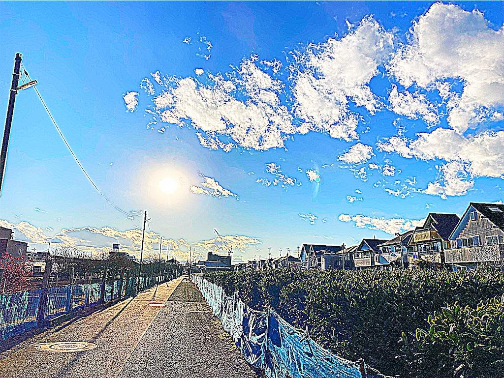f:id:yukane_naito:20210101165117j:image