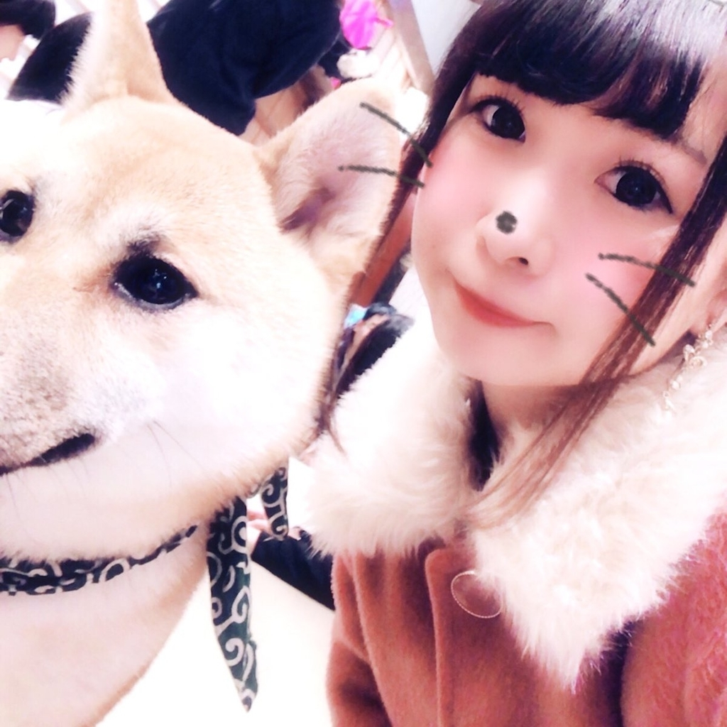 f:id:yukanyohu:20181127211640j:plain