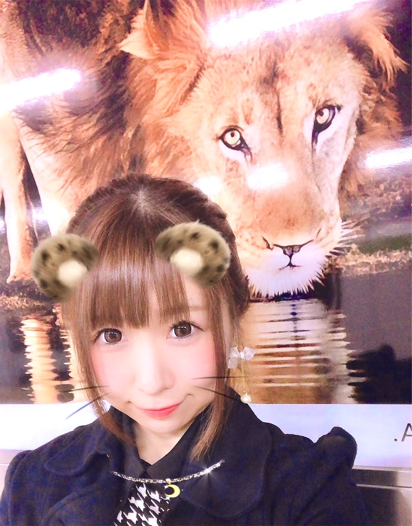 f:id:yukanyohu:20190416234143j:image