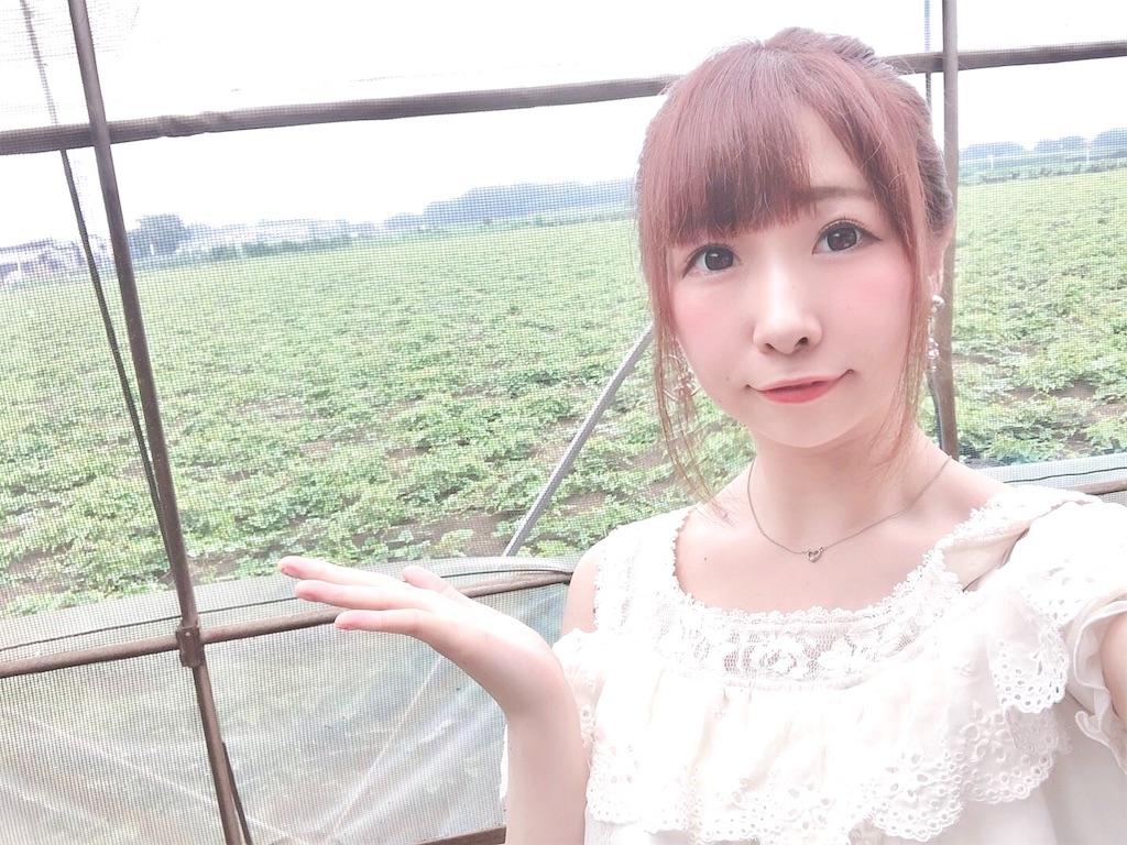 f:id:yukanyohu:20190715174616j:image