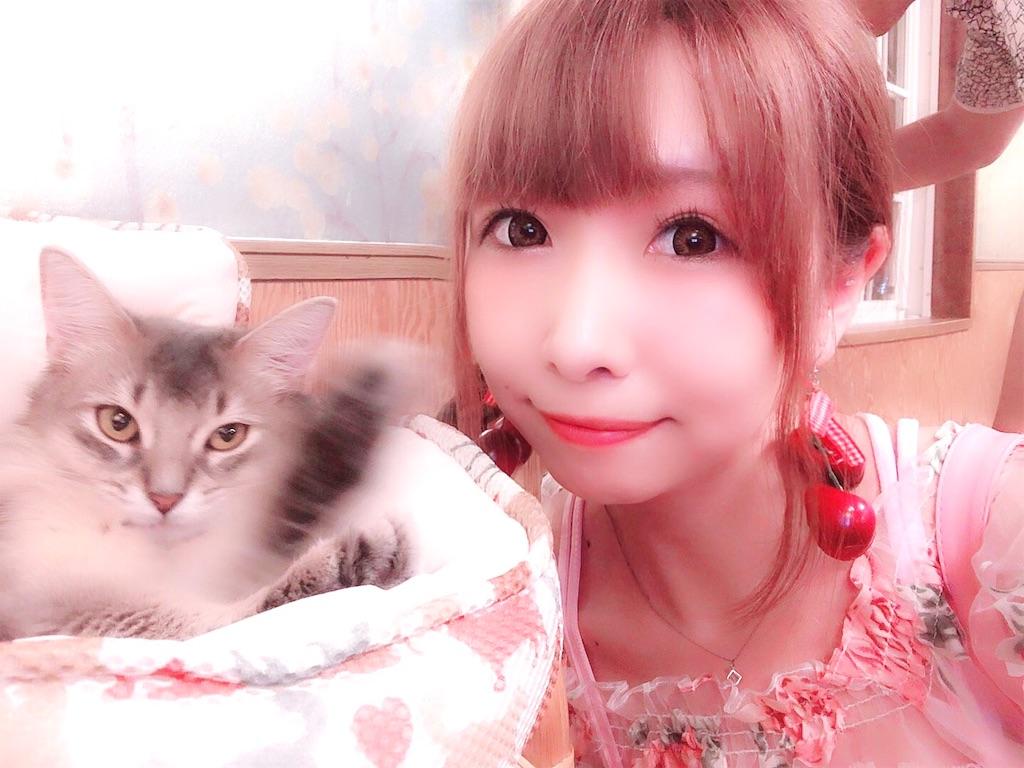 f:id:yukanyohu:20190828022700j:image