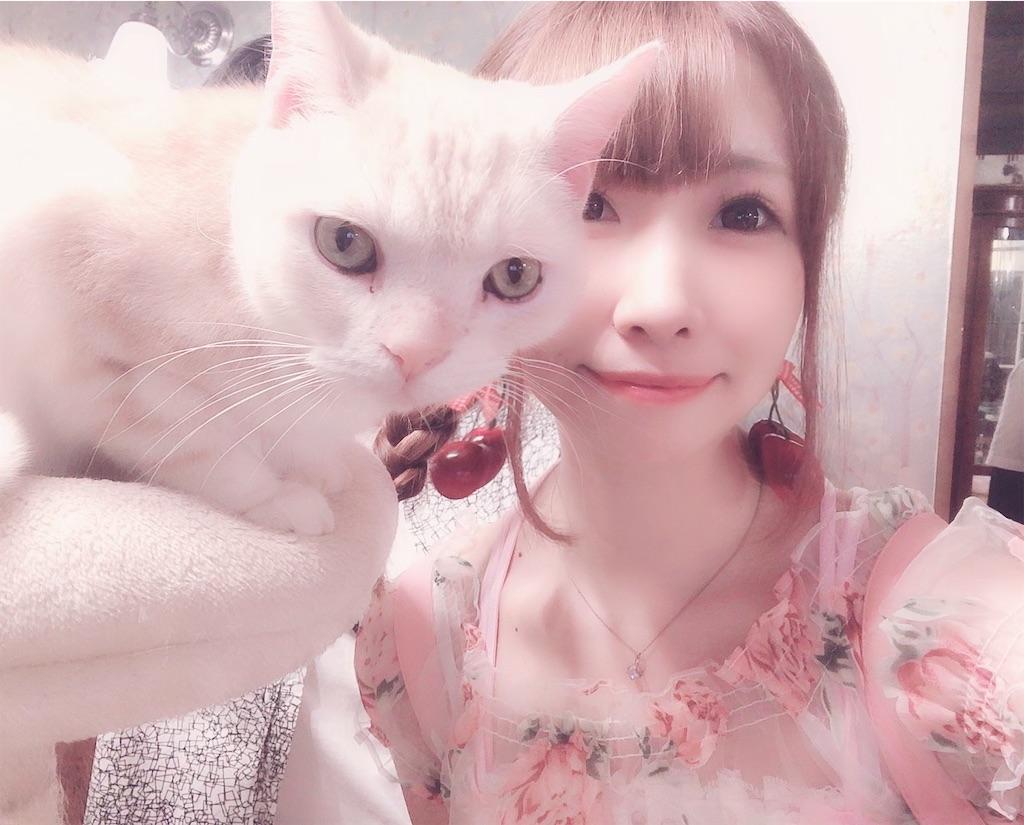 f:id:yukanyohu:20190828022703j:image