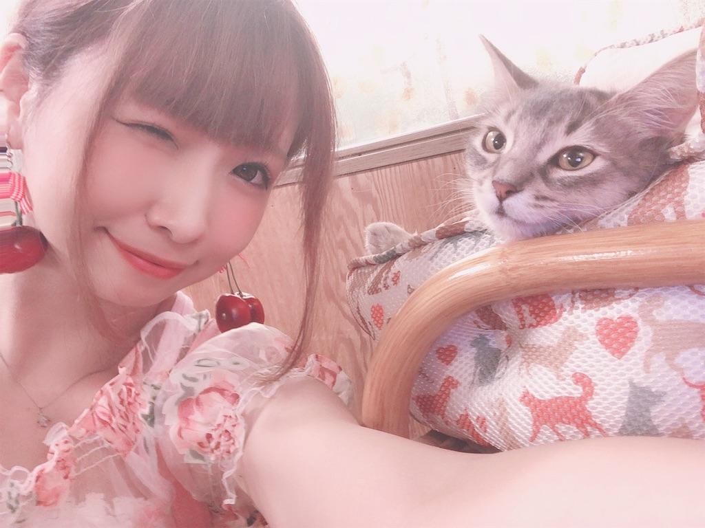 f:id:yukanyohu:20190828022708j:image