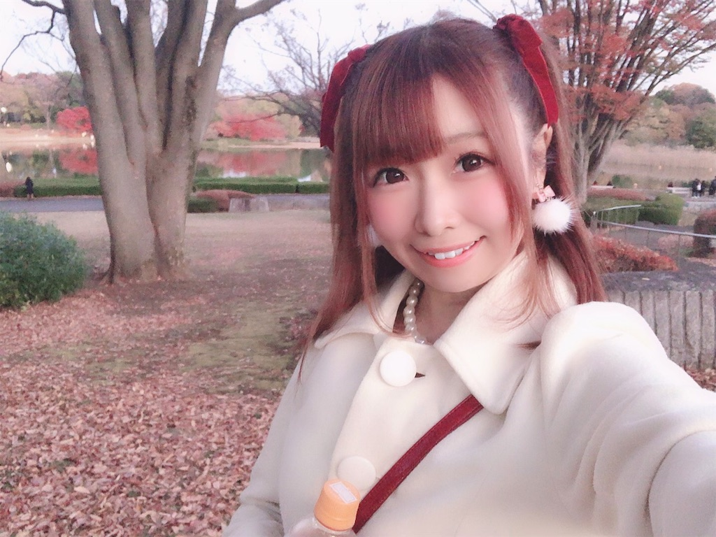 f:id:yukanyohu:20191201011418j:image