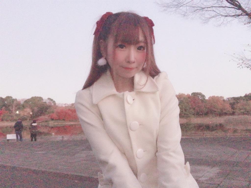 f:id:yukanyohu:20191201011619j:image