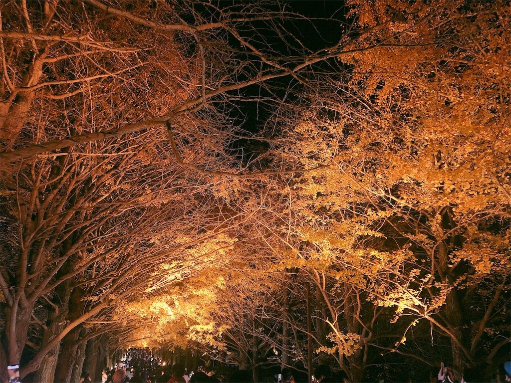 f:id:yukanyohu:20191201012346j:image