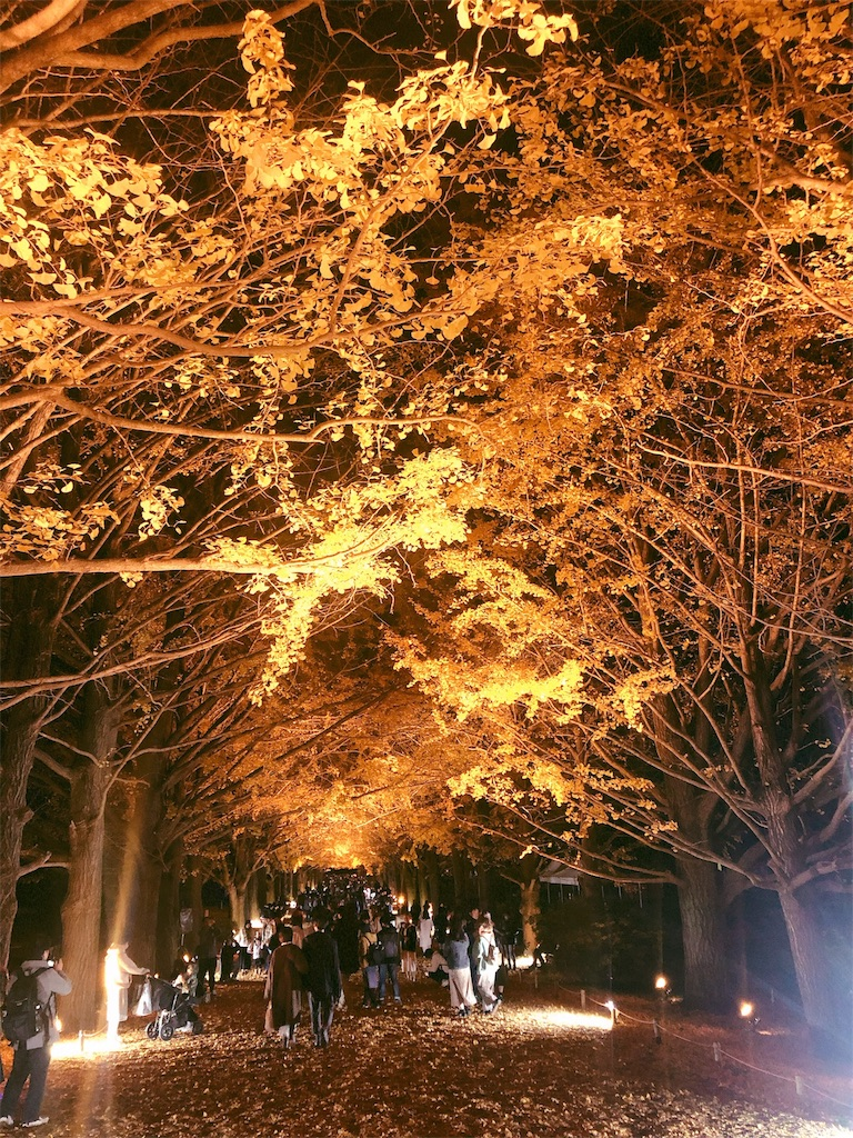 f:id:yukanyohu:20191201012505j:image
