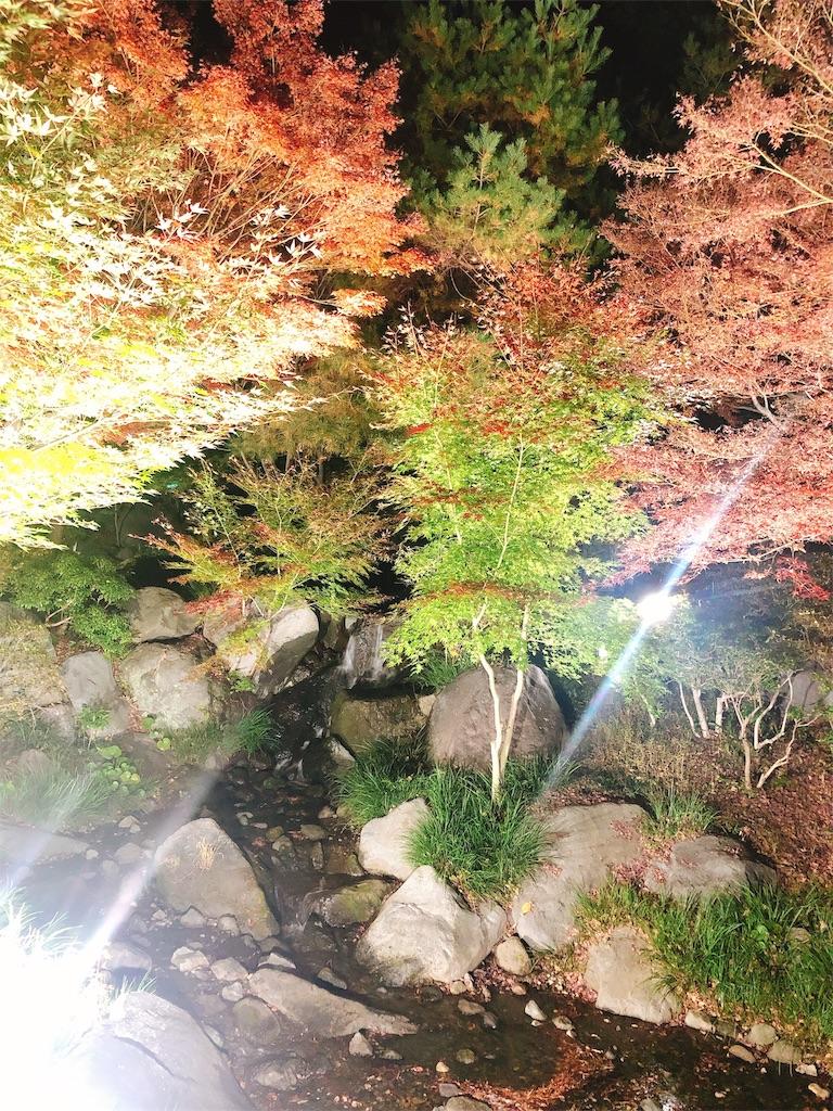f:id:yukanyohu:20191201013814j:image