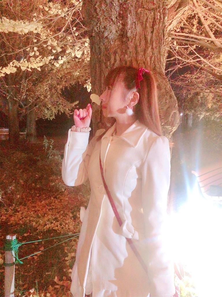 f:id:yukanyohu:20191201014009j:image