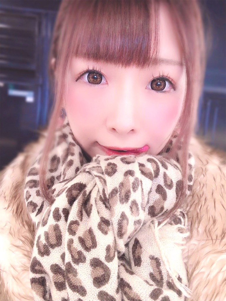 f:id:yukanyohu:20191228034301j:image