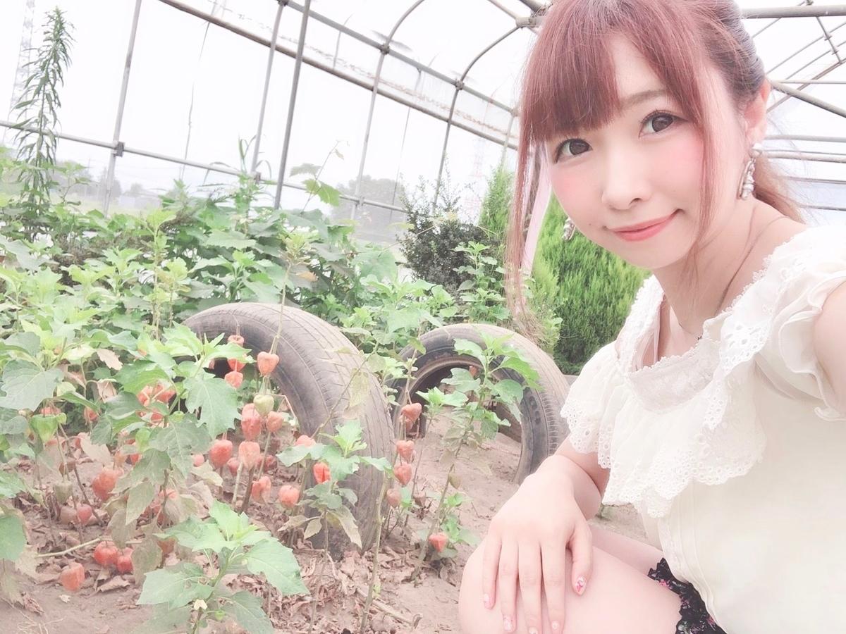 f:id:yukanyohu:20191231213750j:plain