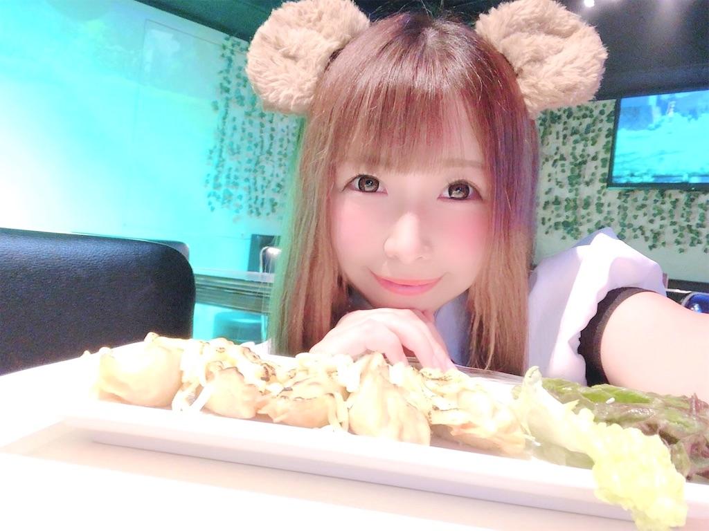 f:id:yukanyohu:20200119154141j:image