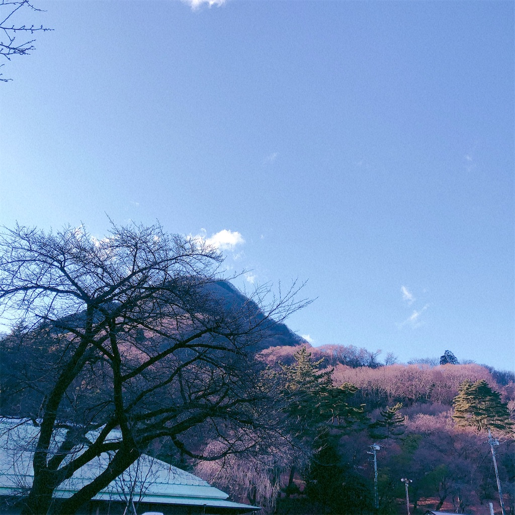 f:id:yukanyohu:20210104224839j:image
