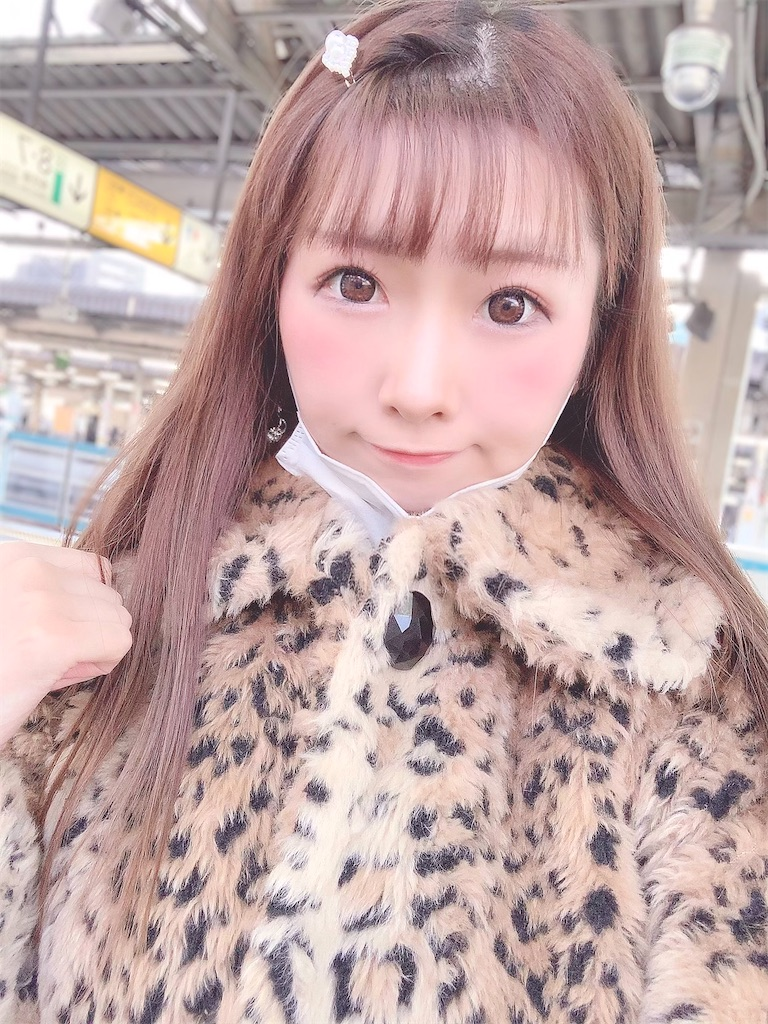 f:id:yukanyohu:20210127231701j:image