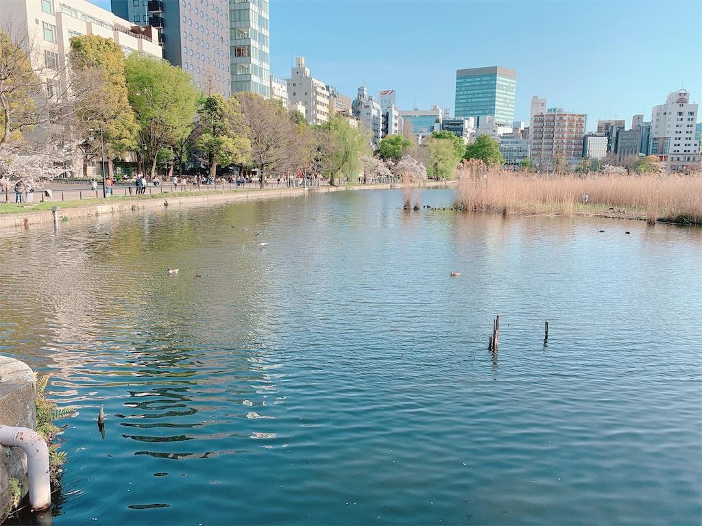 f:id:yukanyohu:20210402033108j:image