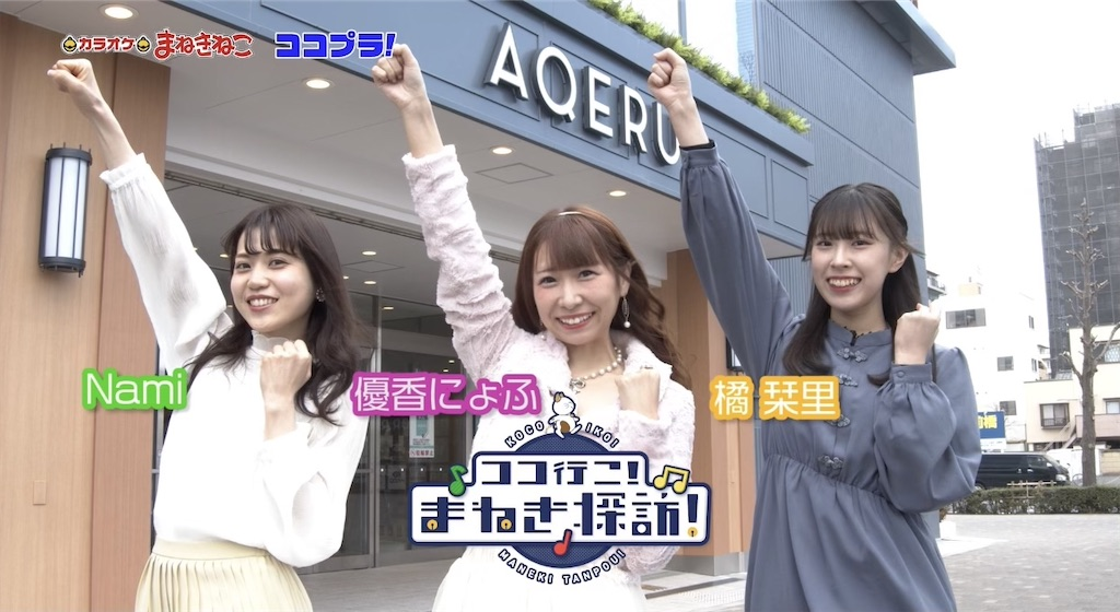 f:id:yukanyohu:20210505060909j:image