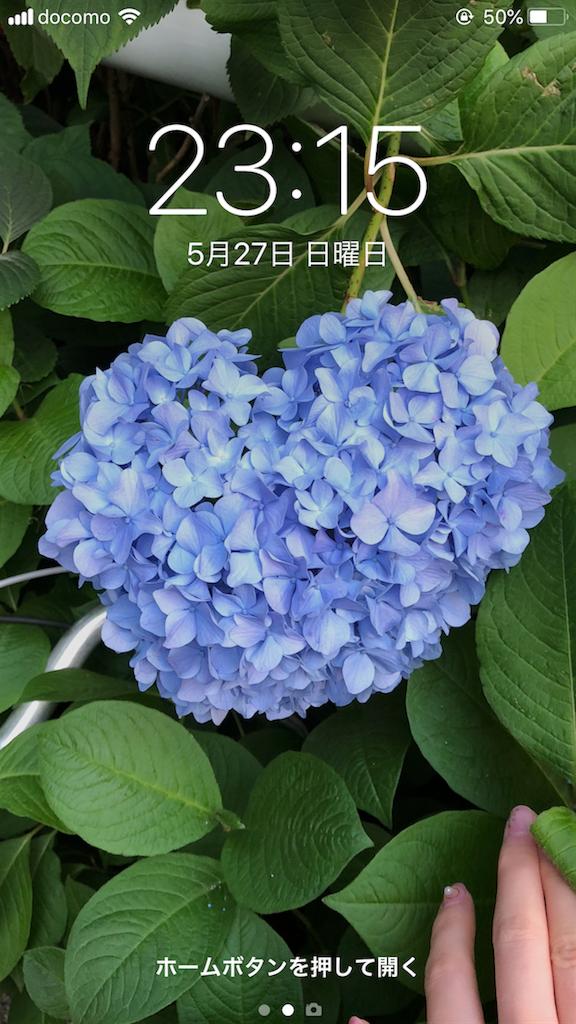 f:id:yukanzel:20180527231518p:image