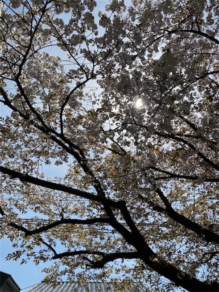 f:id:yukari35:20200330174935j:image