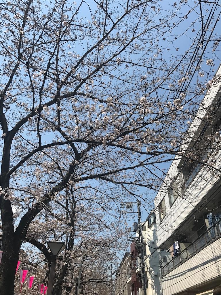 f:id:yukarine152:20170406000211j:image