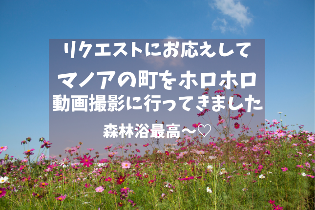 f:id:yukarinn-808:20200913142302p:plain