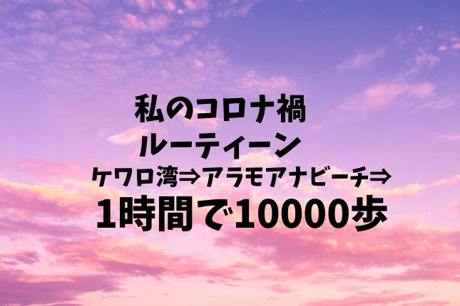 f:id:yukarinn-808:20201011094031p:plain
