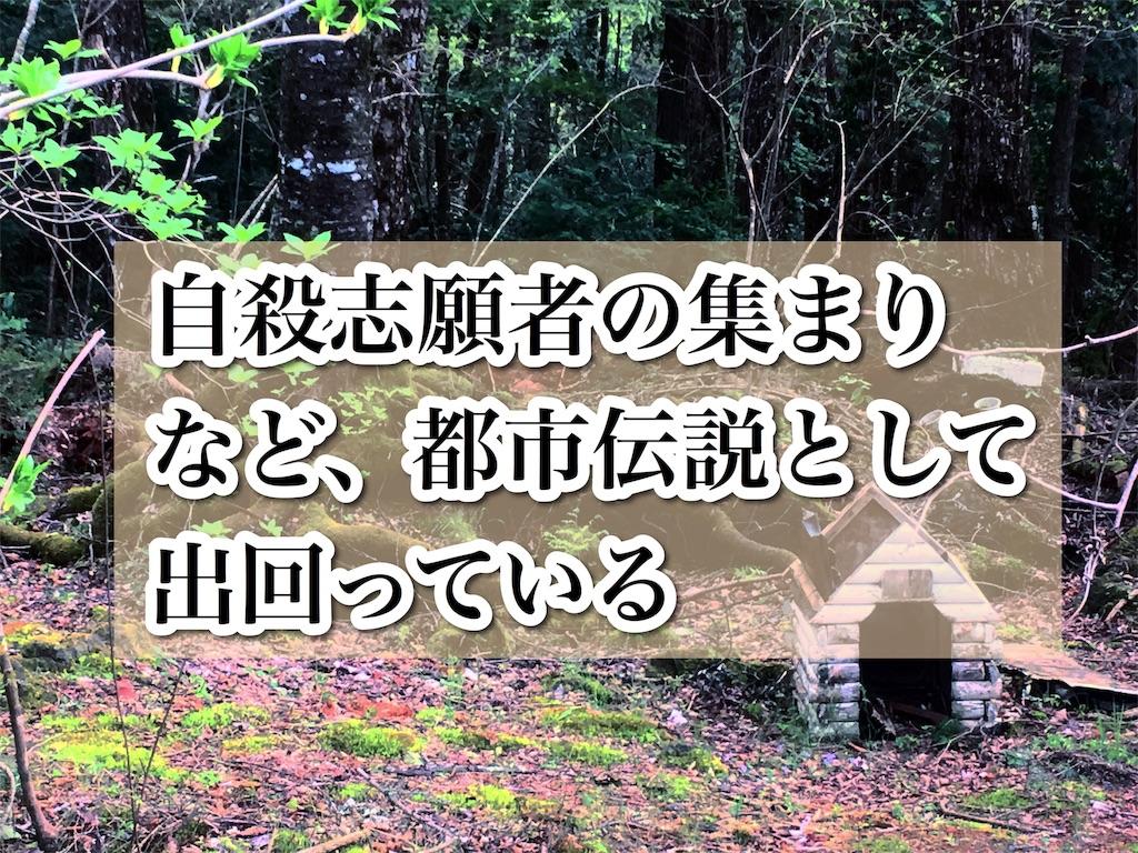 f:id:yukatanotabi:20190529124851j:image