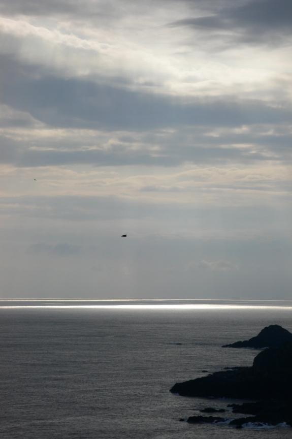 屋久島・尾之間 谷崎鼻から見た南西方向の海