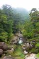 [旅行][屋久島]屋久島、ヤクスギランド、沢津橋。花崗岩は十文字にすっぱり割れる。