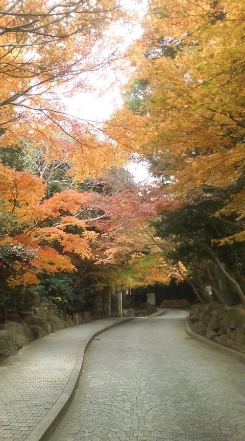 鎌倉 鎌倉文学館(旧前田侯爵邸)の入口。