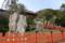 鶴岡八幡宮、大イチョウの今
