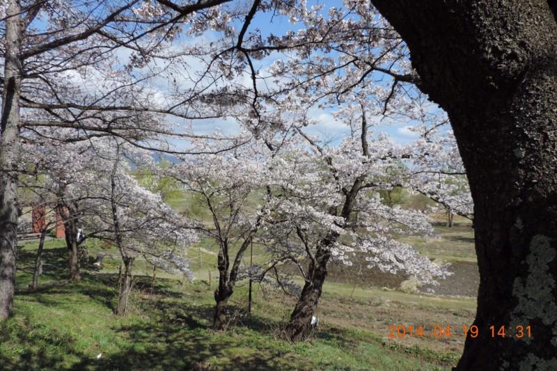 f:id:yuken1220:20140420043858j:image