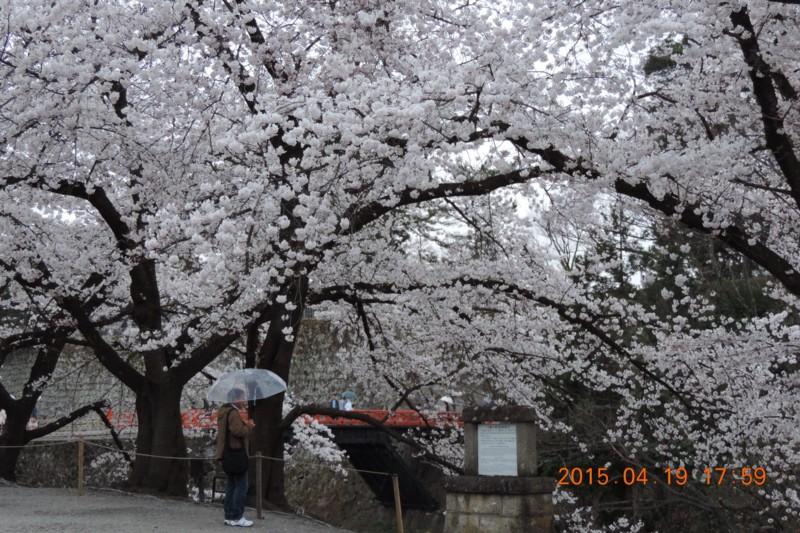 f:id:yuken1220:20150420061416j:image