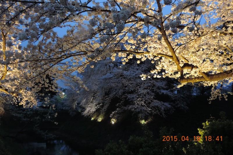 f:id:yuken1220:20150420062335j:image